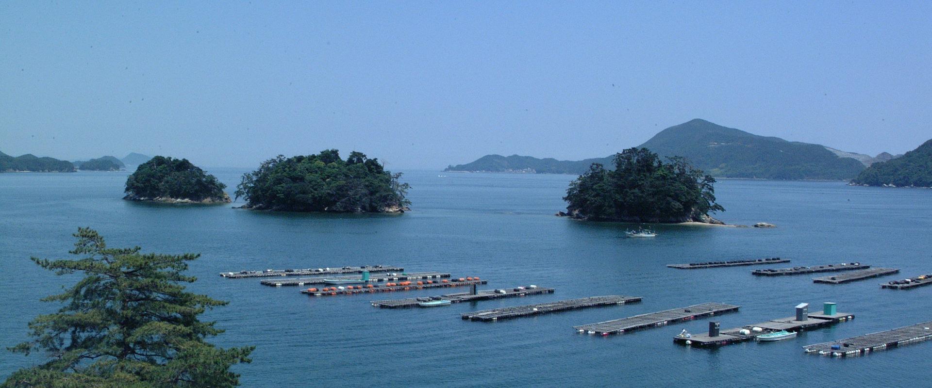パーマリンク先: 温泉バカンス(Onsen Vacation)